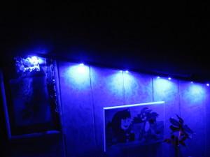 Фитолампа синего спектра в темноте