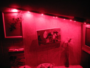 Фитолампа красного спектра в темноте