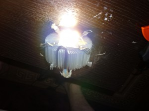 Свет от светодиодной фитолампы